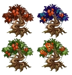 Magical trees with unusual fruits and flowers vector image vector image