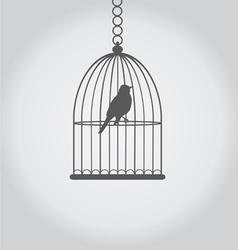 bird grey vector image vector image