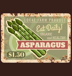 Asparagus vegetable metal plate rusty farm food vector