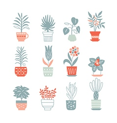flowers in pots vector image