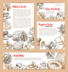 Sketch posters of nuts and fruit seeds vector