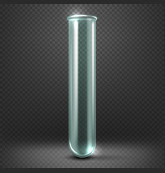 Realistic empty glass test tube template vector image vector image