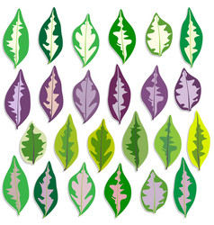 Colorful caricature plant leave set vector
