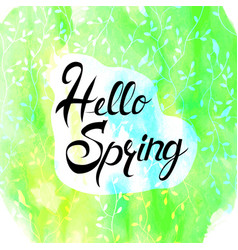 Hello spring lettering on brush hand drawn vector