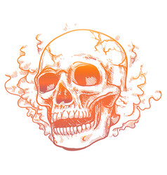 Human skull in smoke smell vector