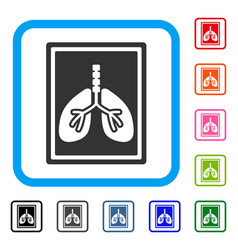 lungs x-ray photo framed icon vector image