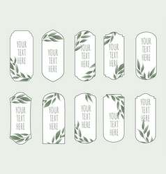 set vintage labels with green leaves vector image