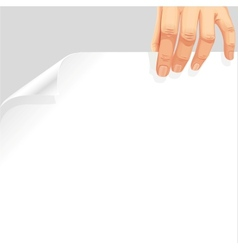 Male hand holding a blank white page curl vector image vector image