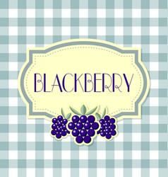 blackberry label vector image
