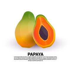 papaya on white background healthy lifestyle or vector image