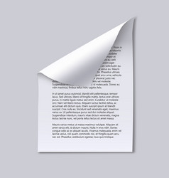 Paper sheet with text and page curl vector