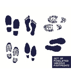 Pixel footprints vector