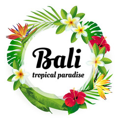 Tropical paradise bali vector