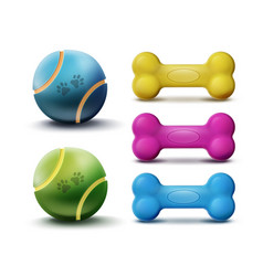 pet toys vector image vector image