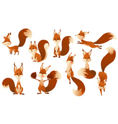 cute cartoon squirrels sweet friendly animals vector image