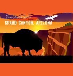 drawing view grand canyon vector image