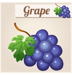 Grape Detailed Icon vector image