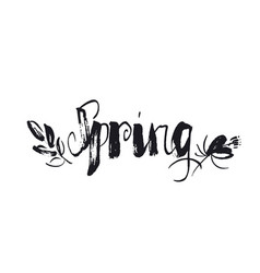 hand drawn spring word lettering vector image
