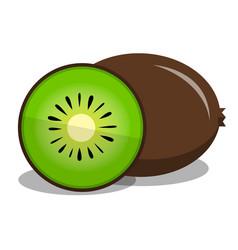 Kiwi fruit flat vector