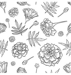 Marigold seamless pattern vector