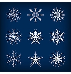 Set of snowflakes on dark blue background vector image