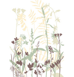 silhouettes of flowers and grass vector image