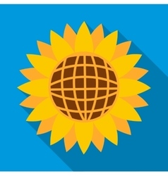 Sunflower icon flat style vector