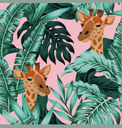 tropical leaves giraffe seamless pattern pink vector image