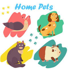 bright images of domestic animals cat snail dog vector image vector image