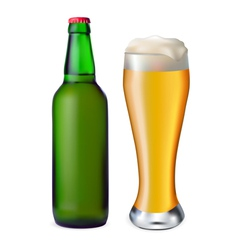 Beer in glass and bottle vector image vector image