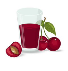 ripe cherries on a white vector image vector image
