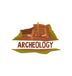archeology science poster banner template vector image