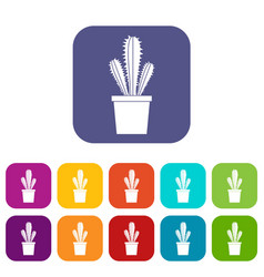 Cactus in flower pot icons set flat vector