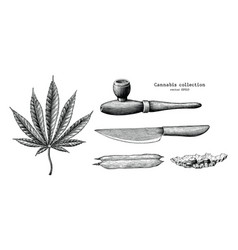 cannabis collection hand draw vintage clip art vector image