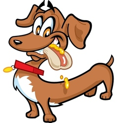 Dachshund Hot Dog vector image