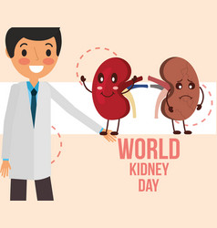 doctor with two kidneys happy and sick vector image