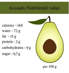 Healthy lifestyle avocado vector