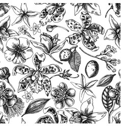 seamless pattern with black and white laelia vector image