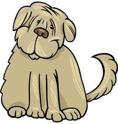 shaggy terrier dog cartoon vector image