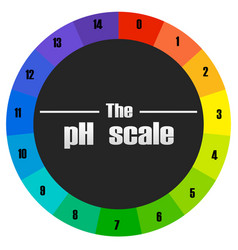 The ph scale circle vector