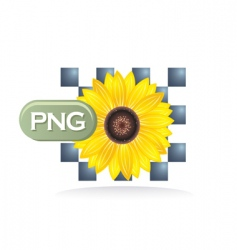 PNG icon vector image vector image