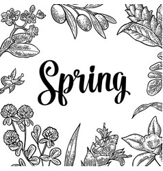 Square poster with flower blooming branch leaves vector