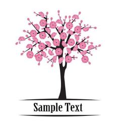 Japanese cherry tree blooming vector