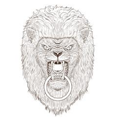 lion head outline vector image