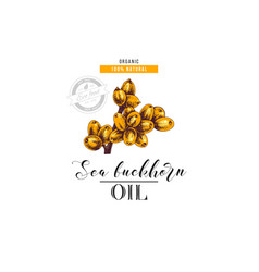 sea buckhorn oil logo template vector image