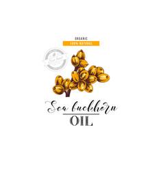 sea buckhorn oil logo template vector image