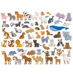 Series various land and sea animals vector