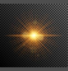 golden light vector image
