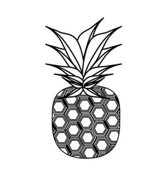 isolated pineapple fruit vector image vector image