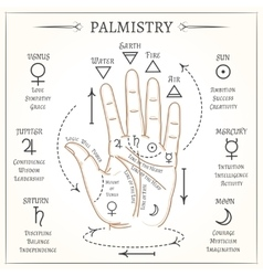 Palmistry mystical reading vector image